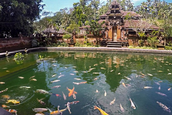 Tirta Empul Holy Water Temple Ubud Bali 2017
